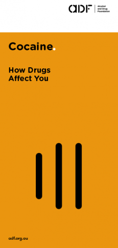 cocaine, How drugs affect you, cover
