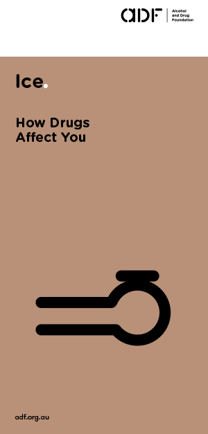 Ice - How drugs affect you, cover